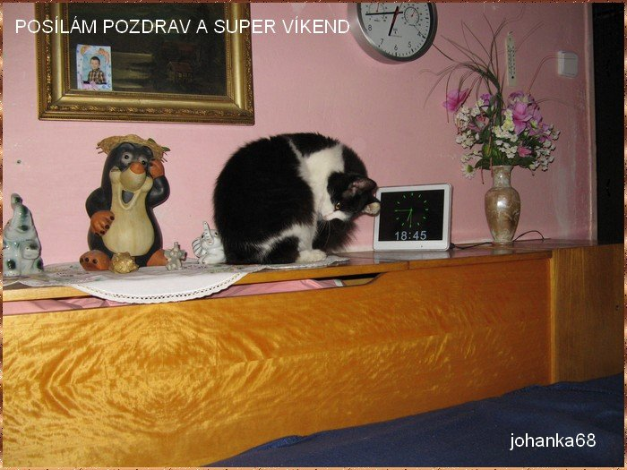 An den Beitrag angehängtes Bild: http://img15.dreamies.de/img/380/b/bvfy34e5wzp.jpg