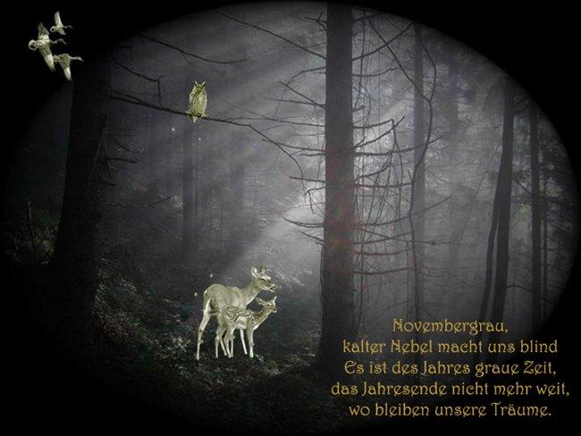 An den Beitrag angehängtes Bild: http://img15.dreamies.de/img/678/b/enllwlecrh1.jpg