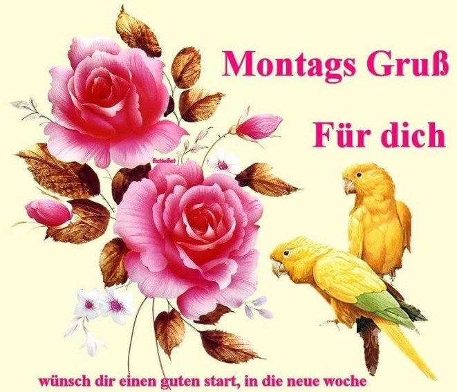 An den Beitrag angehängtes Bild: http://img15.dreamies.de/img/830/b/uvqo2r74x0e.jpg