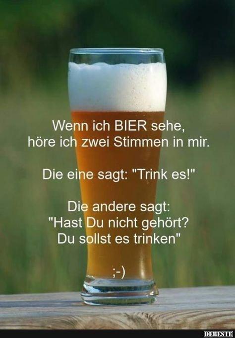 Lustige Bilder Bier Trinken